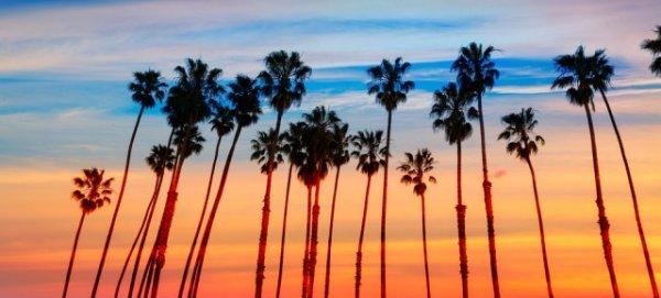 10 Tage San Diego mit Übernachtungen sowie Mietwagen über Urlaubspiraten/Expedia