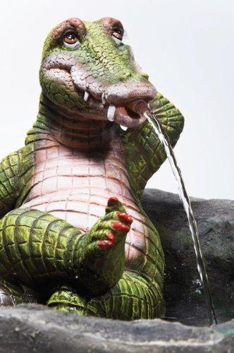 Lady Crocodile Zimmerbrunnen für echte Mydealzer!