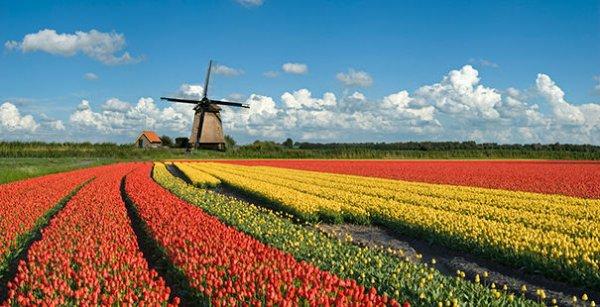[vente-privee] Flusskreuzfahrt Holland Deluxe auf der MS VistaPrima für 299€