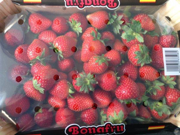 [Lokal München] 3kg Erdbeeren für 5 Euro