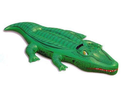 Für Echte Mydealer, Aligator Luftmatratze