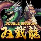 DoubleDragon [iOS iPhone]