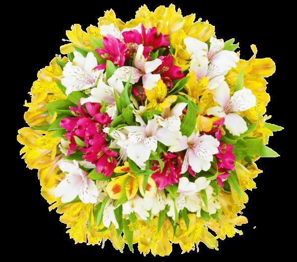 Blumenstrauß Sommerlich für 12,90€ inklusive Versand
