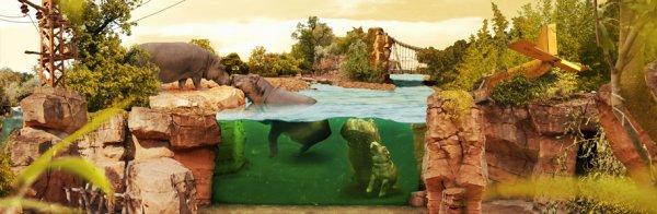[Lokal] Zoo Hannover - Eintritt für 2 Erwachsene und bis zu 3 Kinder für 59,- €