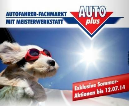 Auto Plus - Inspektion inkl. 20€ Aral Tank Gutschein für 59€