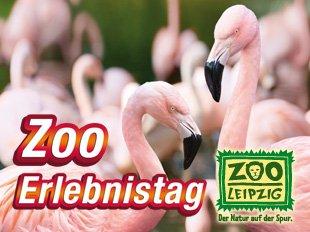 Freier Eintritt Zoo Leipzig am 21.07.14 6-8uhr