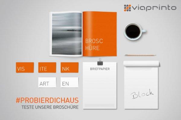 100 Broschüren von Viaprinto für die ersten 30 Bestellungen (Wert: 163,54 €)