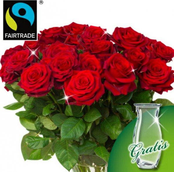 [floraprima.de] 30 FairTrade Rosen (Rot oder Orange)+ Glasvase für 29,94€ inkl. Versand
