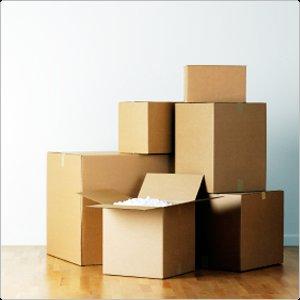 5 Kartons Gratis für SÜWAG Kunden