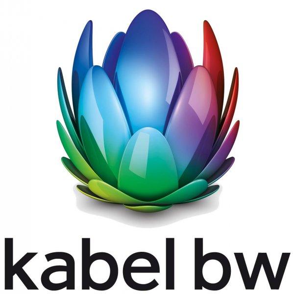 Kabel BW 2play Plus 100 Wechsler, Internetz 100mbit/s, 2,5Mbit/s Up + Festnetzflat für effektiv 23.70€/Monat