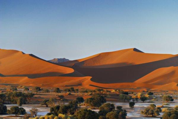 Flüge: Windhoek (Namibia) ab Frankfurt 600,- € hin und zurück (November - Dezember)