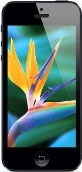 [ebay.de] Apple iPhone 5 64GB Schwarz u. Weiß Inkl.Vsk für 399 € (B-Ware)