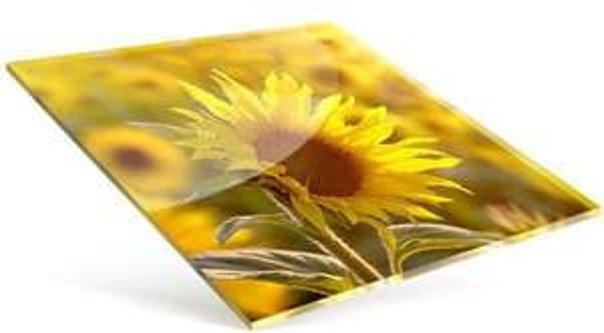 Bilder auf Leinwand oder hinter Acryl-Glas 20 x 20 cm ab 3,35€ + 6,90€ Versand