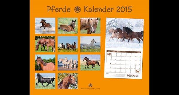 Pferdekalender 2015 selber ausdrucken