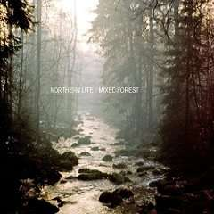 Northern Lite - Mixed Forest EP (MP3)