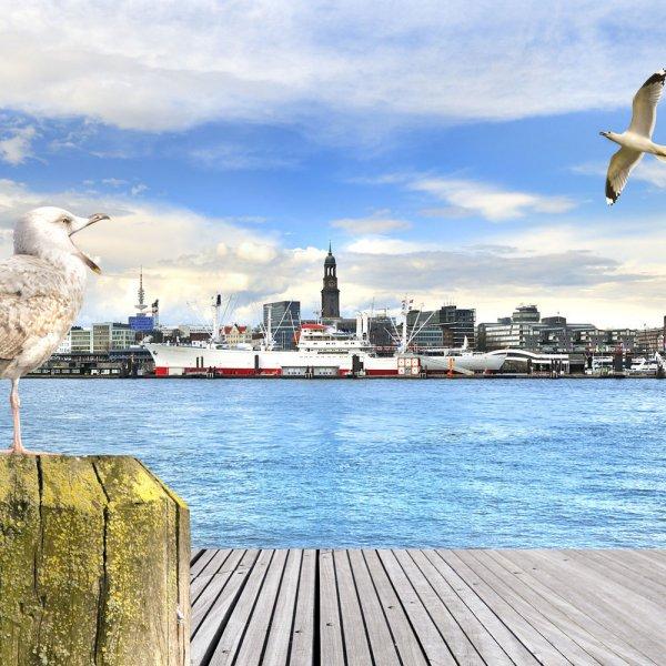 Hamburg - 3T Kurzreise für Zwei ins Hotel Altenwerder Hof!, Reise, Städtetrip