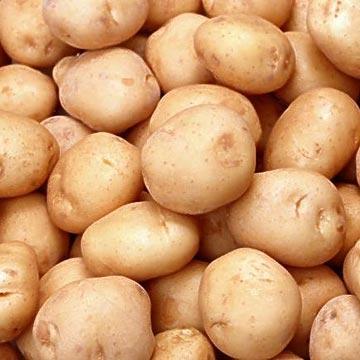 10 kg Sack Kartoffeln Qualitiät I nur 1,50 € bei REWE