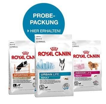 3kg Royal Canin Hundefutter - Kostenlos (Last Chance)