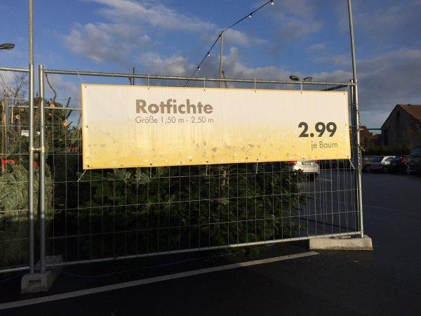 [Kaufland, bundesweit] Oh Tannebaum: Rotfichte, ganzer Baum für 2,99 €