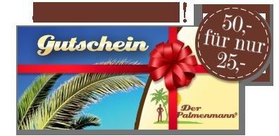 50% Rabatt auf einen Geschenkgutschein vom Palmenmann