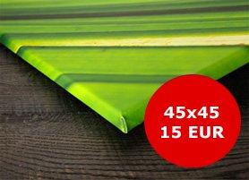 Leinwand 45x45 nur 15,00 Euro statt 41,95 Euro - pixelfotoexpress