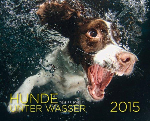 [Amazon] Hunde unter Wasser Kalender 2015