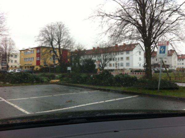 Kostenlose Weihnachtsbäume beim Rewe in Bielefeld/ Babenhausen