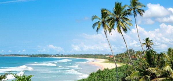 14 Tage Sri Lanka mit Halbpension nur 876€ inkl. Flügen, Transfer & Zug zum Flug