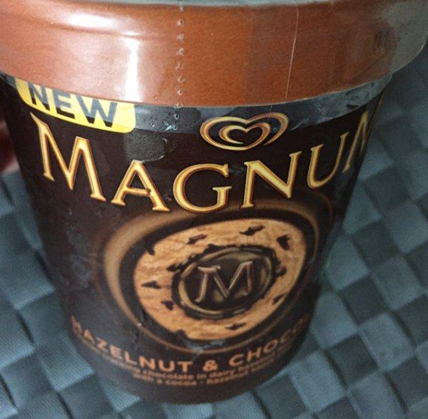 [Real Bocholt] Magnum Eiscreme 450ml für 0,50 Cent (MHD 01/2015)