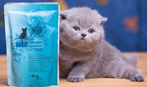Catz FineFood Katzen Nassfutter günstig bei PetsPremium und Zooroyal (REWE)