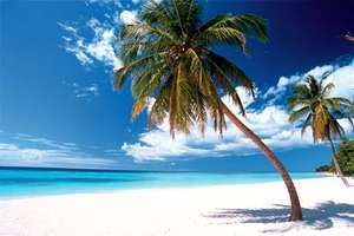 Update! Hamburg ->Dom. Rep. Punta Cana 350 Euro p.P TUIfly 4 Wochen