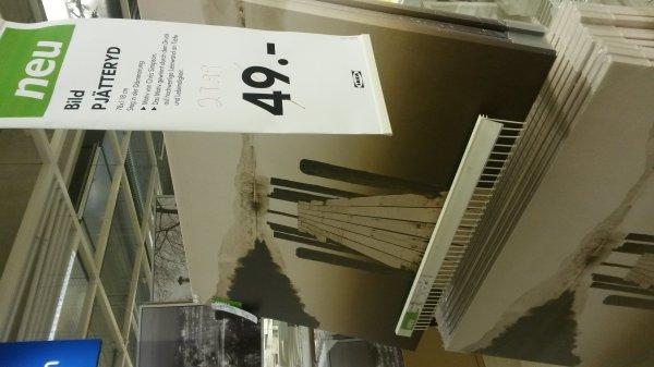 (Ikea Ulm) Leinwandbild Pjätteryd Steg in der Dämmerung 78x118