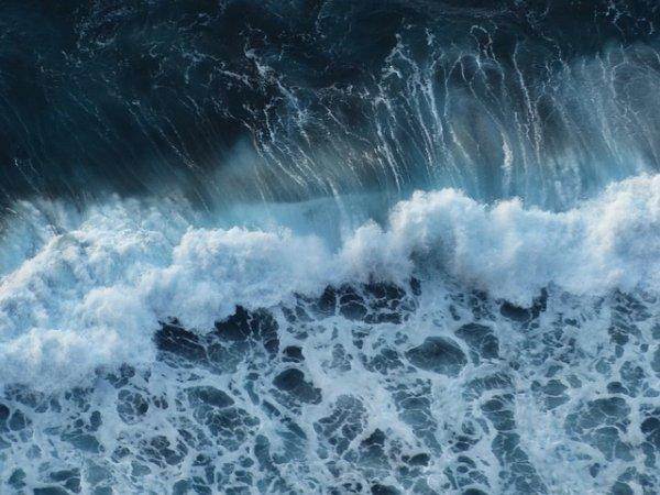 Mehr über unsere Meere lernen. Der Einfluss der Menschen aufs Meer. World Ocean Review