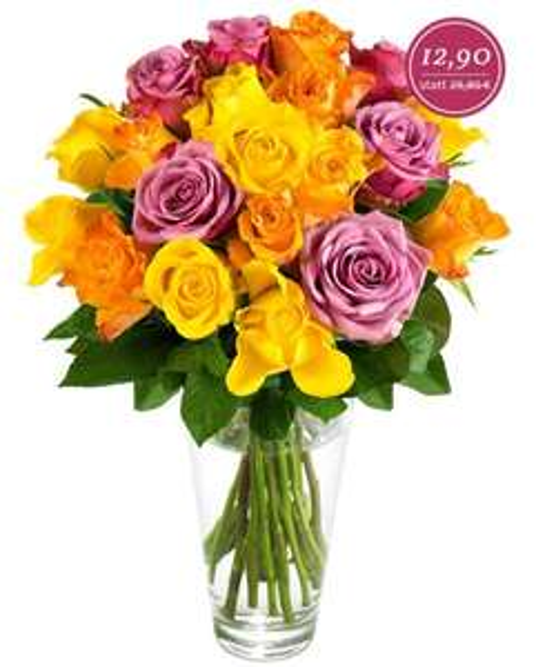 [Miflora] 20 Rosen für 18,80 EUR inkl. Versand (+10% Qipu)