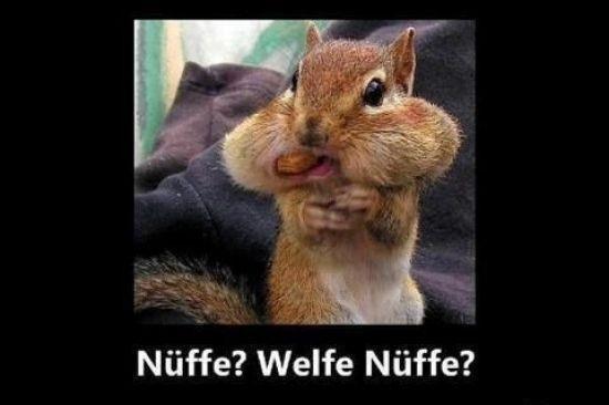 [Lidl/Bundesweit] Ültje Erdnüsse 300g (6x50g) für 1,99€ (1kg = 6,64€) ab 07.04.2015