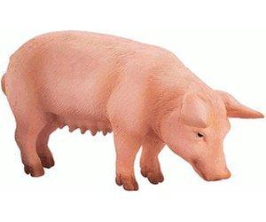 [Lokal Dortmund] Schleich Tiere Abverkauf, Rossmann, 60% Ersparnis und mehr