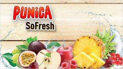 Punica So Freshs für 2,22€ (6 x 0,75l).Macht 0,37€ die 0,75l Flasche bei Thomas Philipps