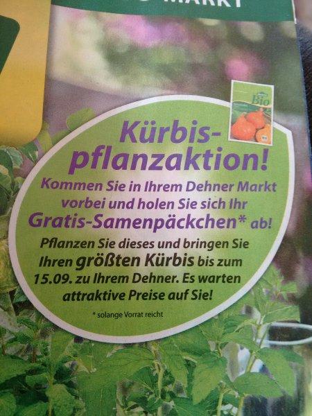 [Lokal] Dehner Gartencenter - Gratis Kürbis-Samen