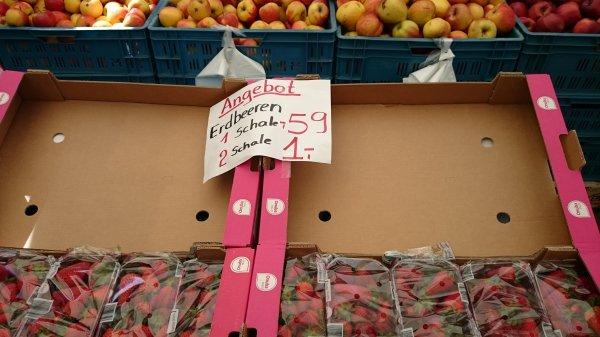[Lokal Hannover] Spanische Erdbeeren Klasse I 500g 0,59€ - 2 Schalen 1€