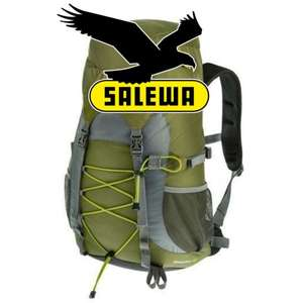 [favorio.com] SALEWA Wanderrucksack Baegdoo 28l darklime