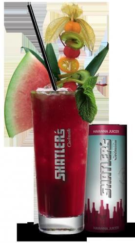 SHATLER's Cocktails Zugabe-Aktion: Bei jeder Bestellung über 70 Euro gibt es 12 Cocktails (Havanna Juicer) im Wert von 30 Euro kosten los dazu.
