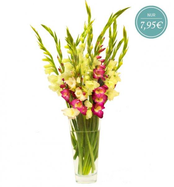"""(Miflora) Blumenarrangement """"Sophie"""" mit bunten Gladiolen für 12,90 EUR (statt 19,90 EUR)"""