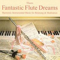 [Saturn] H. Thors - Fantastic Flute Dreams - (CD) [Gratis bei Abholung]