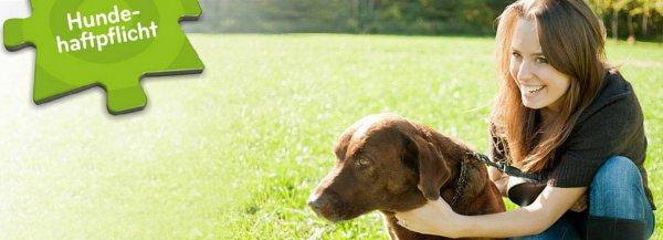 Asstel Hundehaftplicht ab 40,25/Jahr + 35€ Amazon Gutschein