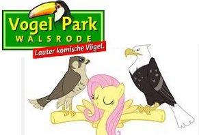 Vogelpark Walsrode (kostenloser Eintritt für alle Geburtstagskinder)