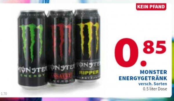 Monster Energy venlo 2 Brüder