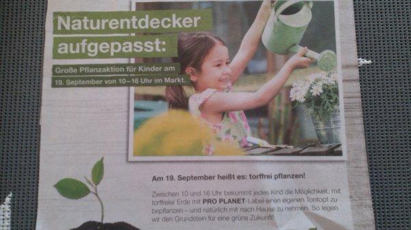 [Toom] Tontopf bepflanzen für Kinder