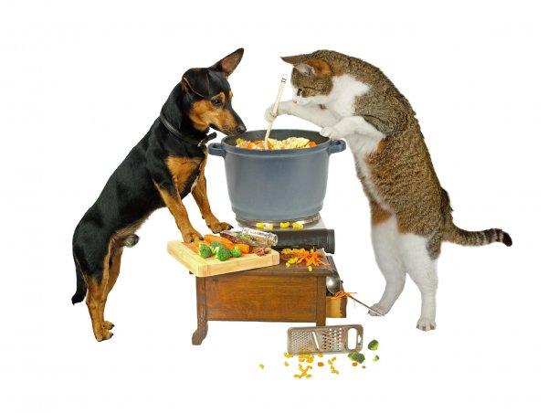 [Bundesweit] Übersicht der Tierfutter und Tierzubehör Angebote der Kw 39. Heute auch mit Futter für Nager!!!!!