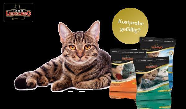 Katzen Futter Leonardo -> GRATIS