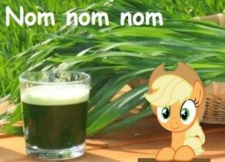 Kostenlose Tee & Saft Proben (JOMU / www.gerstengras-natur.de)
